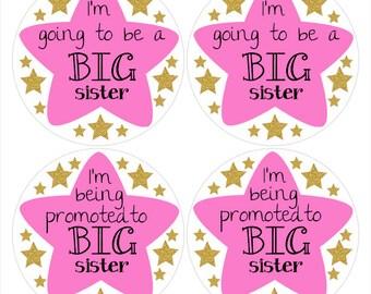 Big Sister Sticker, Baby Announcement Sticker, Promoted to Big Sister, Going to be Big Sister, Big Sis Sticker, Sibling Sticker (642)