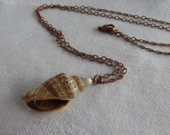 Shell Necklace, Natural Shell, Simple Necklace, Minimalist, Antique Copper