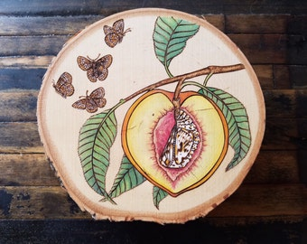 Peach Butterfly Chrysalis Cocoon Silence of the Lambs Hannibal Fantasy Surreal Fruit Pyrography Woodburning Watercolor Transformation