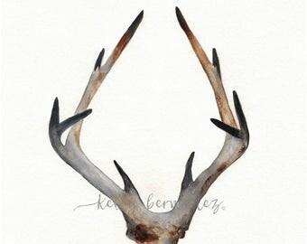 Rustic Antler Print, Watercolor Print, wall art, woodland art