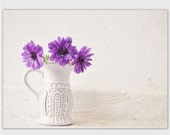 Anemone Flower photography postcard, 5 x 7 greeting card, purple, white, vase, botanical, fine art floral still life, note card, gardener