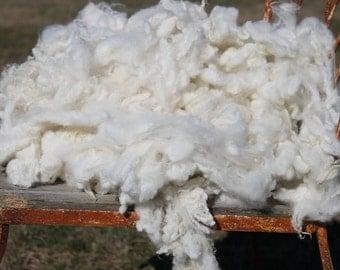 Lamb's wool, 8oz of washed wool, locks, fleece, first shearing, spinning locks