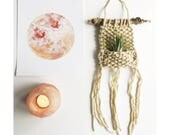AIRPLANT WALL HANGING in cream - mini - Air Planter - Knitted Wall Hanging with Airplant, Bohemian  Home Decor, Boho Wall Art