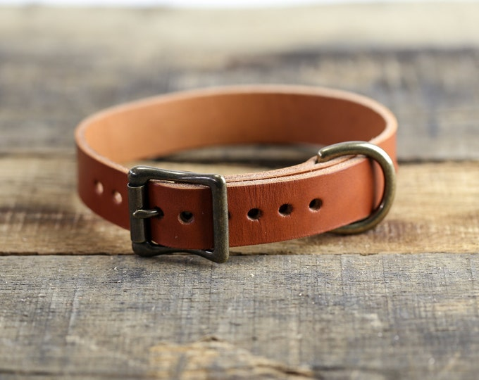 Leather Dog Collar // Chestnut Leather // Antique Brass Hardware