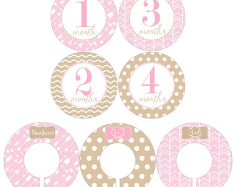 Monthly Stickers and Clothing Dividers Gift Set for Baby Girls in Pink and Tan Designs - BGS009