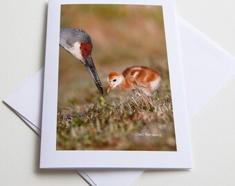 Note Card - Sandhill Crane - Mom and Daughter