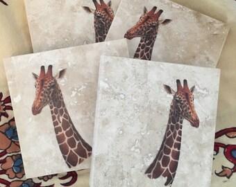 Beautiful Giraffe Coasters - Set of 4- Ready to Ship