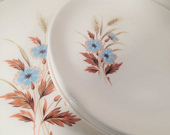 Mid Century dinnerware Taylor Smith Taylor Versatile 1960's Blue Bachelor Button Flowers & brown wheat