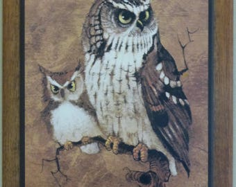 Screech Owls By Richard Hinger - Wood Mounted Owl Print On Wooden Frame - 1970s