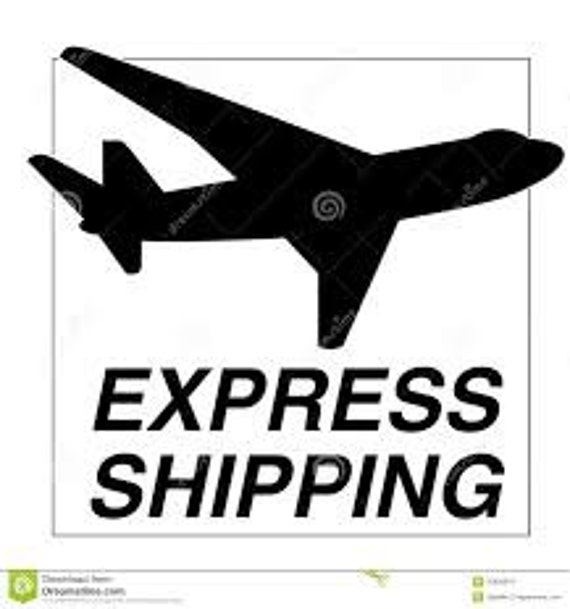 Express Fed Ex Shipping