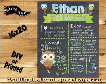 First Birthday Chalkboard sign boy 1st birthday owl chalk board photo prop customized first birthday poster digital file or printed
