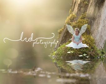 Digital Backdrop/Swamp log/Fantasy/Fairy/Newborn/Prop