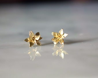 Baby Blossom Studs in Yellow Brass