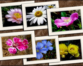 6 Wildflower Photo Note Cards Set - Wildflower Photo Greeting Cards Handmade - 5x7 Wildflower Cards - Photo Greeting Cards Handmade (GP342)