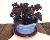 Blue pottery planter cera...
