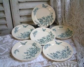 Set of 6 Antique french teal transferware dessert plates. Teal transferware. Jasmine. Butterflies. Blue green transferware. Tea plates