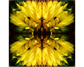 Yellow Abstract Art, Abstract Photography, Yellow Wall art, Surreal Photography, Sunflower Art, Large Wall Art, Modern Photography Prints