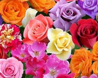 Roses~Mixed Roses~Digital Cotton Fabric~Elizabeth's Studio~Fast Shipping F847
