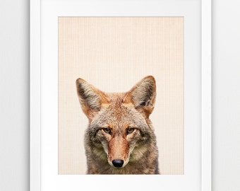 Coyote Print, Nursery Animal Wall Art, Prairie Animal Print, Kids Room Decor, Cute Coyote Photo, Wild Animal Art, Home Decor, Printable Art