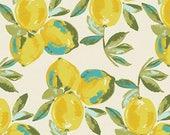 Sage by Bari J Ackerman for Art Gallery Fabrics - Yuma Lemons in Mist