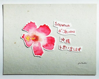 Flower of Okinawa