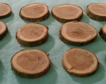12 Yew Wood DISCS, Coins, Slices, Fairy Garden Pathway, Terrarium, Button Stock, Woodworking, Golf Ball Markers, Taxus baccata