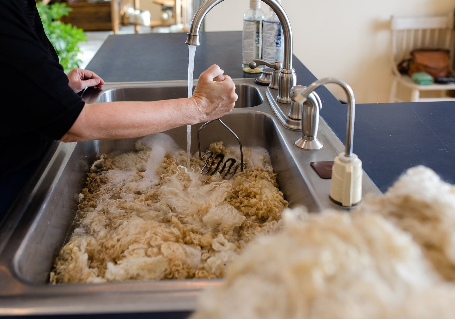 Cleaning the sheep fleece