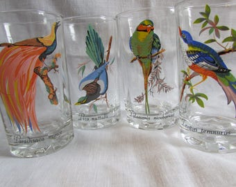 Vintage Juice Glass with Five Exotic Birds Barware