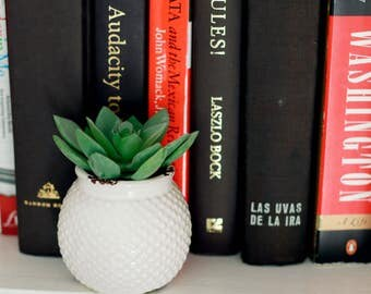 Faux Succulent in Mini White Vase
