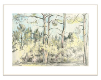 Pine woods drawing PRINT - color pencil drawing of pinetrees  on pleinair -  pine forest landscape art by Catalina.