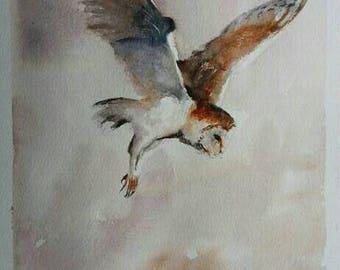 Original Watercolour Painting Barn owl in flight