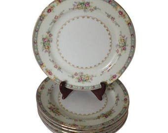 """National China Floral Set of 6 Bread / Dessert Plates Made in Japan """"Rosemary"""" Cottage Living,Replacement Vintage China"""