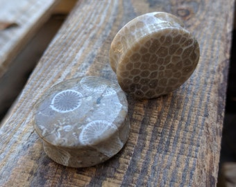 """Beige Fossil Coral Double Flared Saddle Plugs (Pair) 8mm (0g) 10mm (00g) 12mm (1/2"""") 14mm 9/16"""" 16mm 5/8"""" 18mm 20mm 25mm 1"""""""