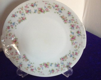 Very pretty bread and butter plate made in Czeckoslovakia