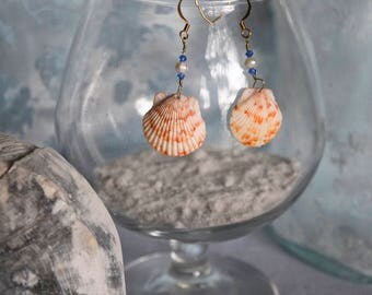 Orange Scallop Shells with Blue Swarovski Crysatals and Freshwater Pearls