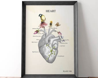 Anatomical heart - gift for nurse - anatomy art - anatomy - medical art - anatomical heart art - abstract anatomy art - anatomical art