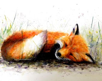 Curl up in the wild - Fox Art Print of my original Watercolour Painting by Nancy Antoni