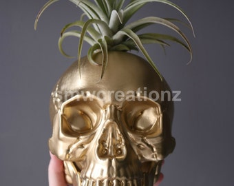 Custom Extra Large Skull Planter with Air Plant Room Decor- Halloween Decor- Home Decor- Plant Decor- Halloween Farmhouse- Birthday Gift