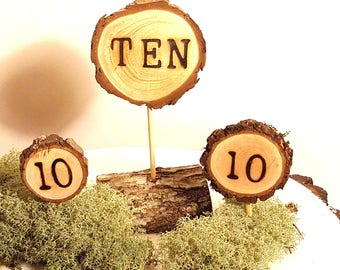 Birthday Topper 10th ~  8 number 10 cupcake toppers ~ Tenth Birthday cake topper ~ Ten Birthday Cake Topper ~ Photography Prop