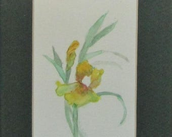 Original watercolor,Watercolor Painting,Floral Watercolor,Watercolor Flowers,Watercolor Art,Original Painting, #37