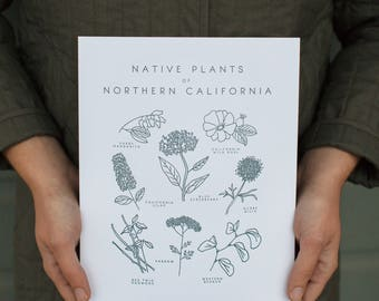 Letterpress Native Plants of Northern California Botanical 8x10 Art Print
