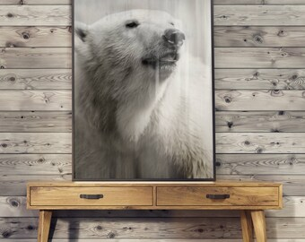 POSTER bears FLEECE - print picture without frame