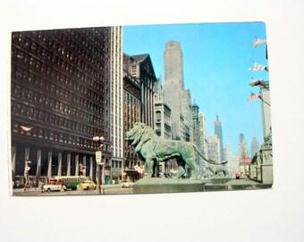 Chicago, Illinois Postcard / Michigan Avenue Lions Chicago Postcard / Chicago Gray Line Tours GL-501 / old cars postcard