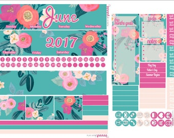 JUNE MONTH VIEW Planner Sticker Kit  sized for Erin Condren Life Planner/Planners