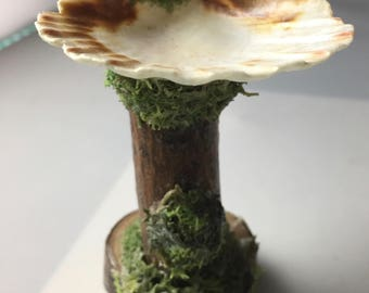 Waldorf Natural Shell Wood and Moss Outdoor Fairy Sink - #4