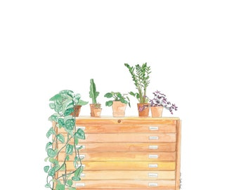 watercolor reproduction furniture to vintage and plant plans