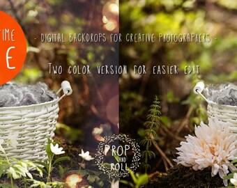 2Digital Backdrops, Newborn digital, newborn digital backdrop, digital prop nest, photoshop background photographie bébé,Neugeborene