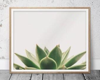 Succulent, Succulent print, Plant print, Minimalist print, Minimalist art, Botanical print, Cactus art, Succulent art print, Trending gifts