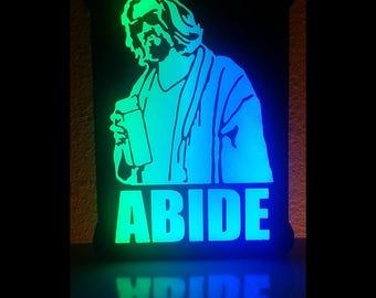 LEDude Abides