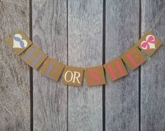 gender reveal banner, he or she banner, boy or girl banner, gender reveal decor, pink or blue banner, gender reveal party decorations, sign